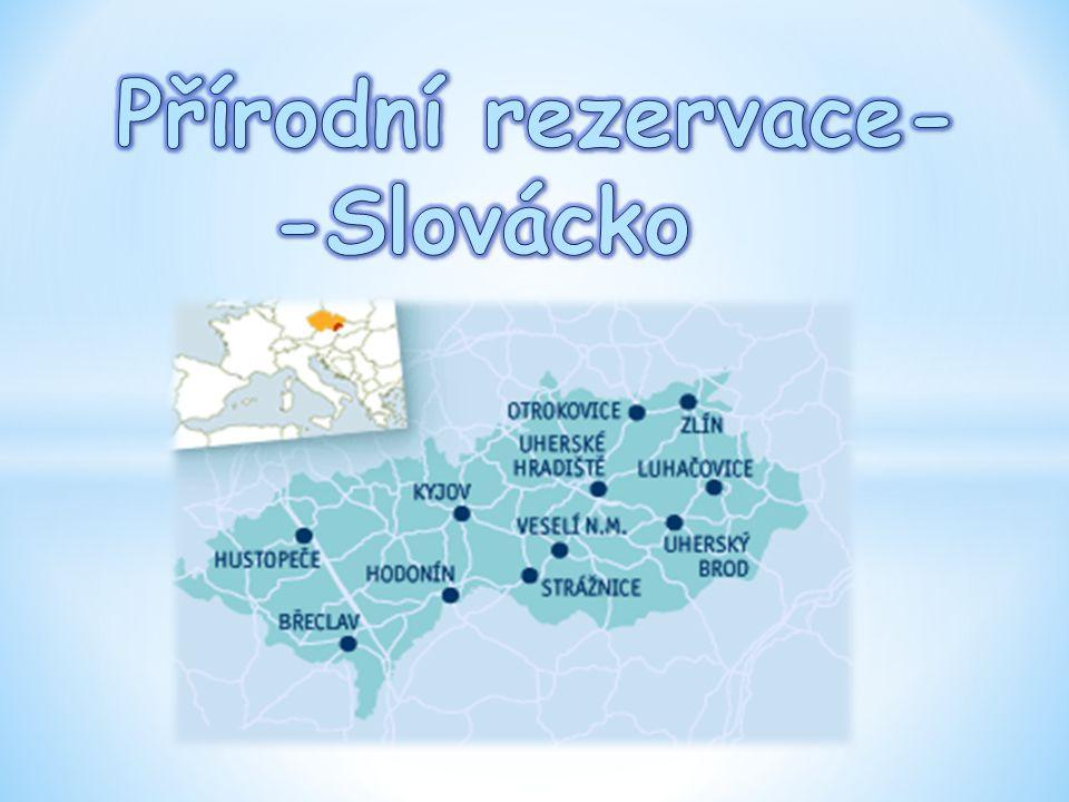 - měly by být vyhlašovány primárně pro ochranu menších území, v nichž jde o ochranu vzácného a regionálně významného stanoviště (např.