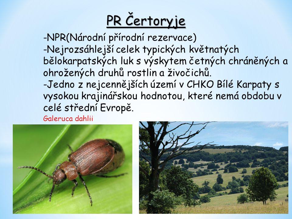 Autor: Martin Kotásek Třída: 9.A Školní rok: 2013/2014 Zdroj: www.nature.hyperlink.cz www.wikipedie.cz www.turistika.cz www.turistik.cz