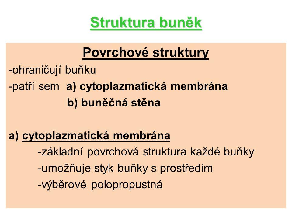 Struktura buněk Povrchové struktury b) buněčná stěna -u rostlinných buněk a buněk bakterií -stavební a ochranná funkce -tvořena celulózou, u hub chitinem -často prostoupena různými látkami (inkrustace SiO 2, CaCO 3, impregnace ligninem) Plazmodezmy – plazmatická vlákénka, obstarávají styk s jinými buňkami,pronikají neztloustlými místy buněčné stěny.