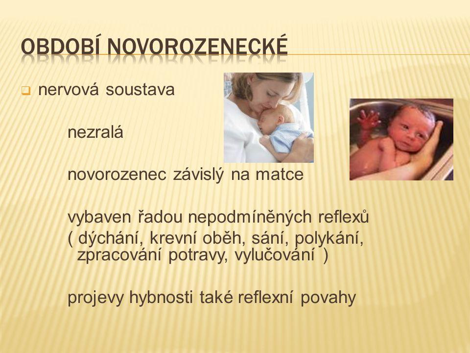  nervová soustava nezralá novorozenec závislý na matce vybaven řadou nepodmíněných reflexů ( dýchání, krevní oběh, sání, polykání, zpracování potravy, vylučování ) projevy hybnosti také reflexní povahy