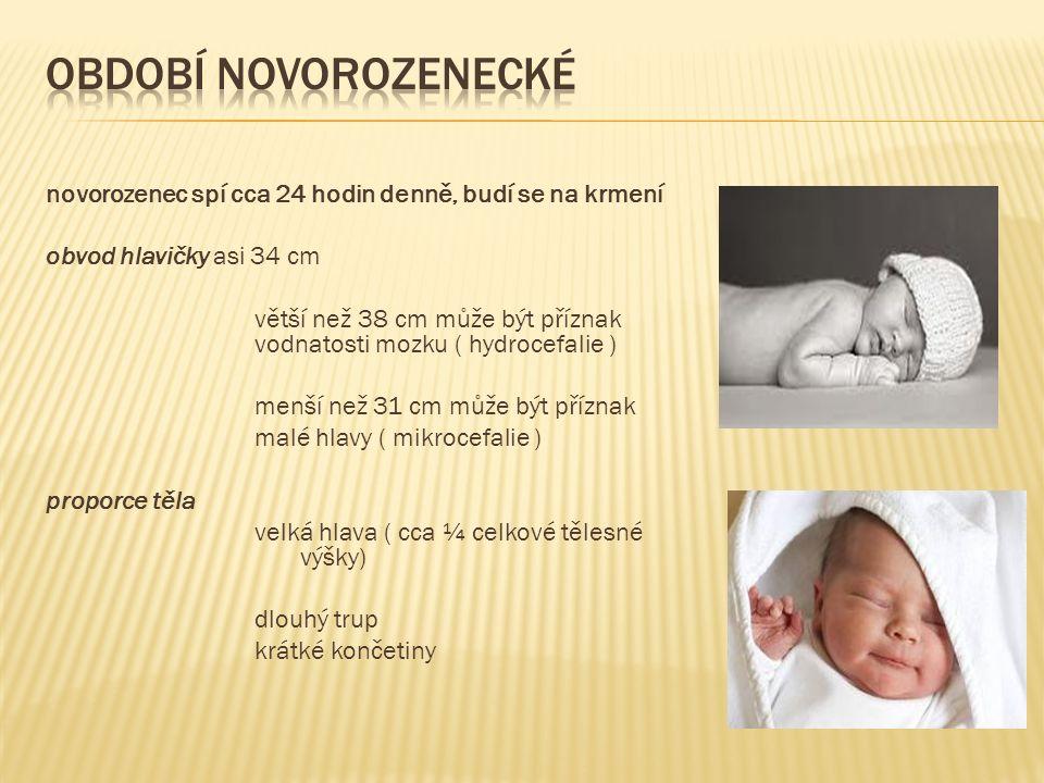 novorozenec spí cca 24 hodin denně, budí se na krmení obvod hlavičky asi 34 cm větší než 38 cm může být příznak vodnatosti mozku ( hydrocefalie ) menší než 31 cm může být příznak malé hlavy ( mikrocefalie ) proporce těla velká hlava ( cca ¼ celkové tělesné výšky) dlouhý trup krátké končetiny