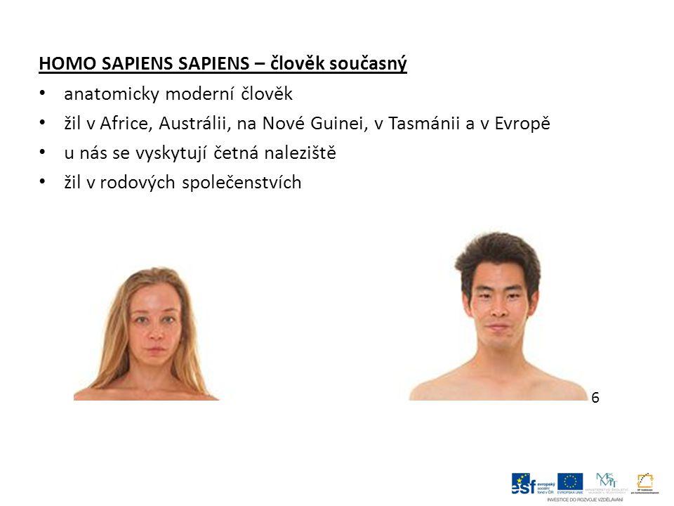 HOMO SAPIENS SAPIENS – člověk současný anatomicky moderní člověk žil v Africe, Austrálii, na Nové Guinei, v Tasmánii a v Evropě u nás se vyskytují četná naleziště žil v rodových společenstvích 6