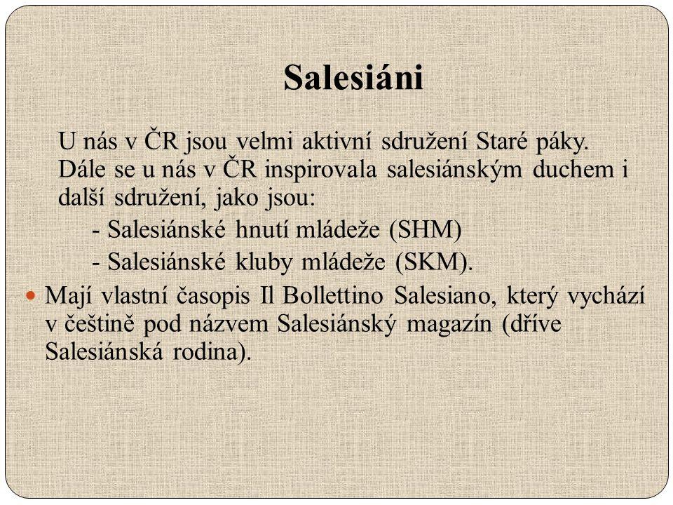Salesiáni U nás v ČR jsou velmi aktivní sdružení Staré páky.