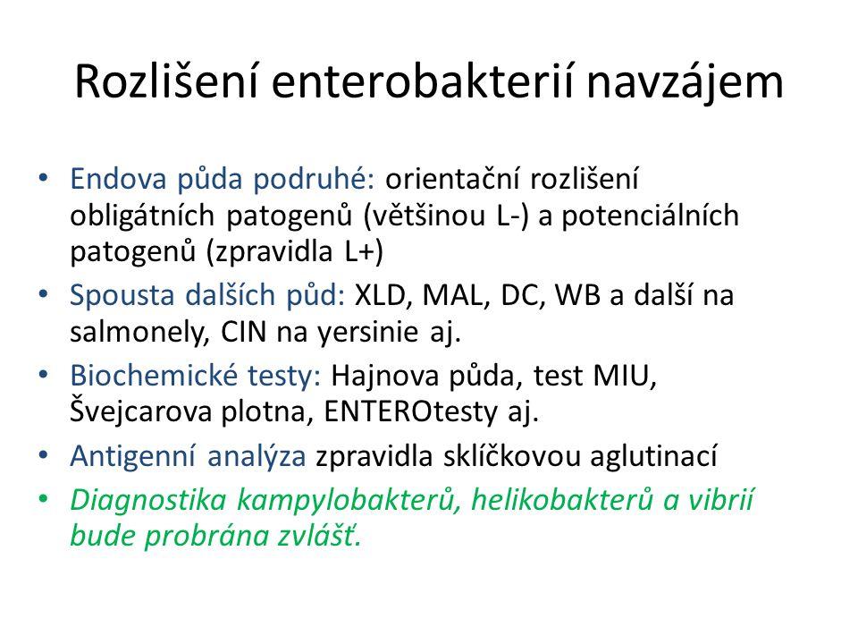 Rozlišení enterobakterií navzájem Endova půda podruhé: orientační rozlišení obligátních patogenů (většinou L-) a potenciálních patogenů (zpravidla L+) Spousta dalších půd: XLD, MAL, DC, WB a další na salmonely, CIN na yersinie aj.