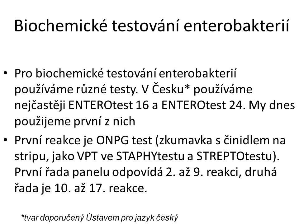 Biochemické testování enterobakterií Pro biochemické testování enterobakterií používáme různé testy.