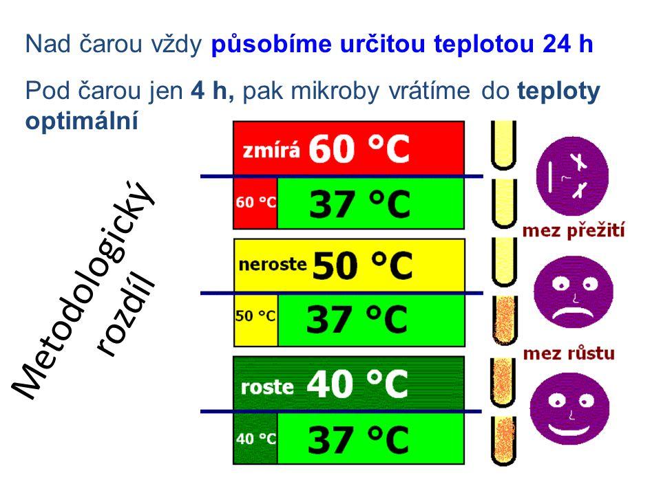 Metodologický rozdíl Nad čarou vždy působíme určitou teplotou 24 h Pod čarou jen 4 h, pak mikroby vrátíme do teploty optimální