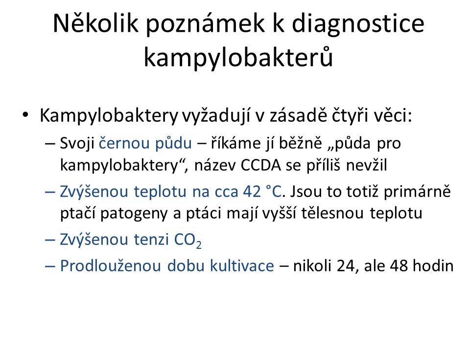 """Několik poznámek k diagnostice kampylobakterů Kampylobaktery vyžadují v zásadě čtyři věci: – Svoji černou půdu – říkáme jí běžně """"půda pro kampylobaktery , název CCDA se příliš nevžil – Zvýšenou teplotu na cca 42 °C."""