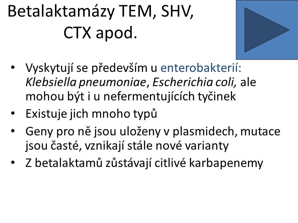 Betalaktamázy TEM, SHV, CTX apod.