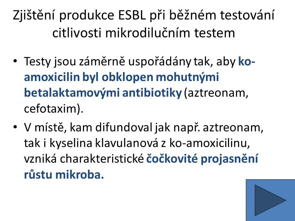 Zjištění produkce ESBL při běžném testování citlivosti mikrodilučním testem Testy jsou záměrně uspořádány tak, aby ko- amoxicilin byl obklopen mohutnými betalaktamovými antibiotiky (aztreonam, cefotaxim).