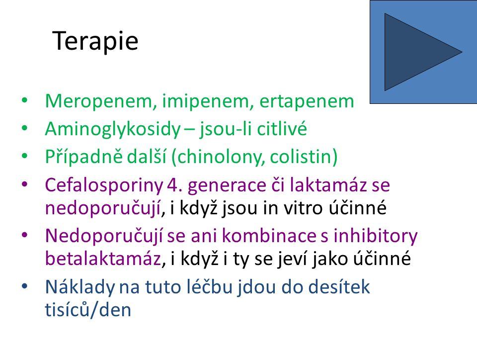 Terapie Meropenem, imipenem, ertapenem Aminoglykosidy – jsou-li citlivé Případně další (chinolony, colistin) Cefalosporiny 4.