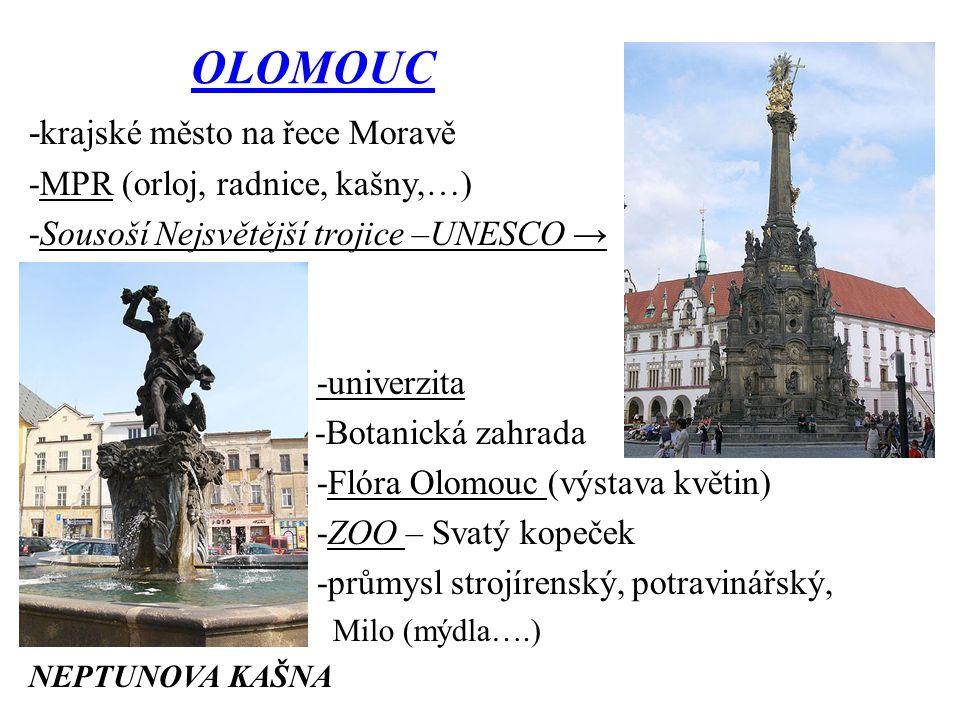 OLOMOUC - krajské město na řece Moravě -MPR (orloj, radnice, kašny,…) -Sousoší Nejsvětější trojice –UNESCO → -univerzita -Botanická zahrada -Flóra Olomouc (výstava květin) -ZOO – Svatý kopeček -průmysl strojírenský, potravinářský, Milo (mýdla….) NEPTUNOVA KAŠNA
