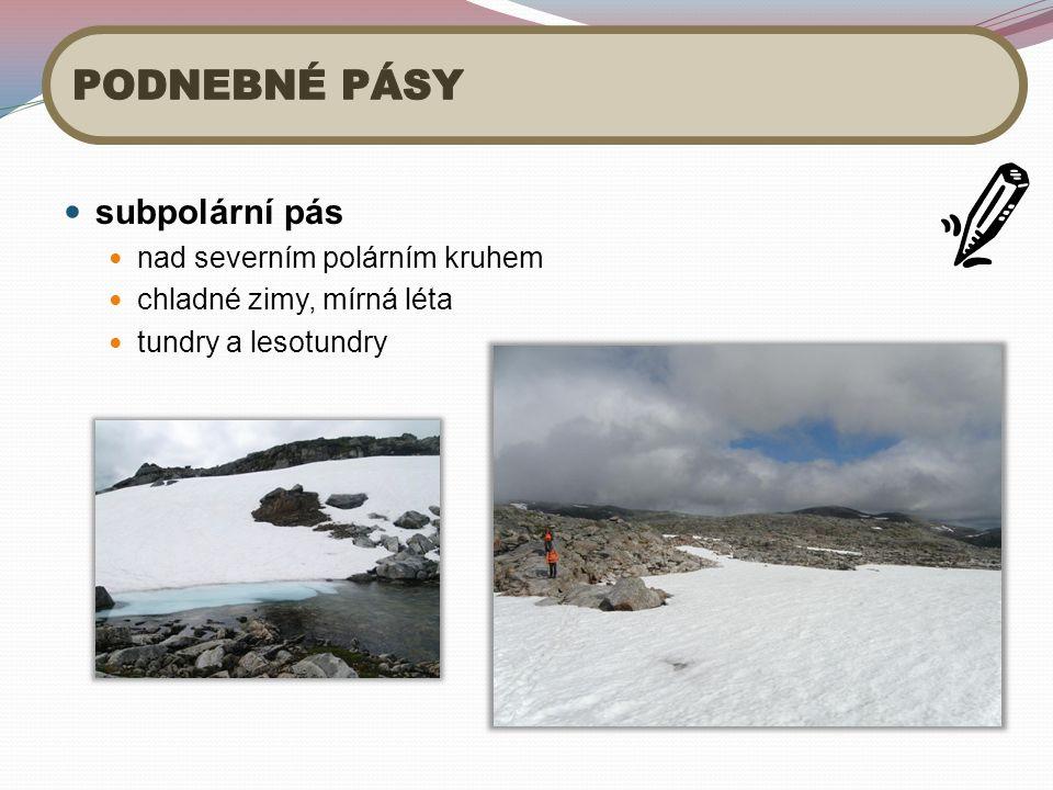 subpolární pás nad severním polárním kruhem chladné zimy, mírná léta tundry a lesotundry