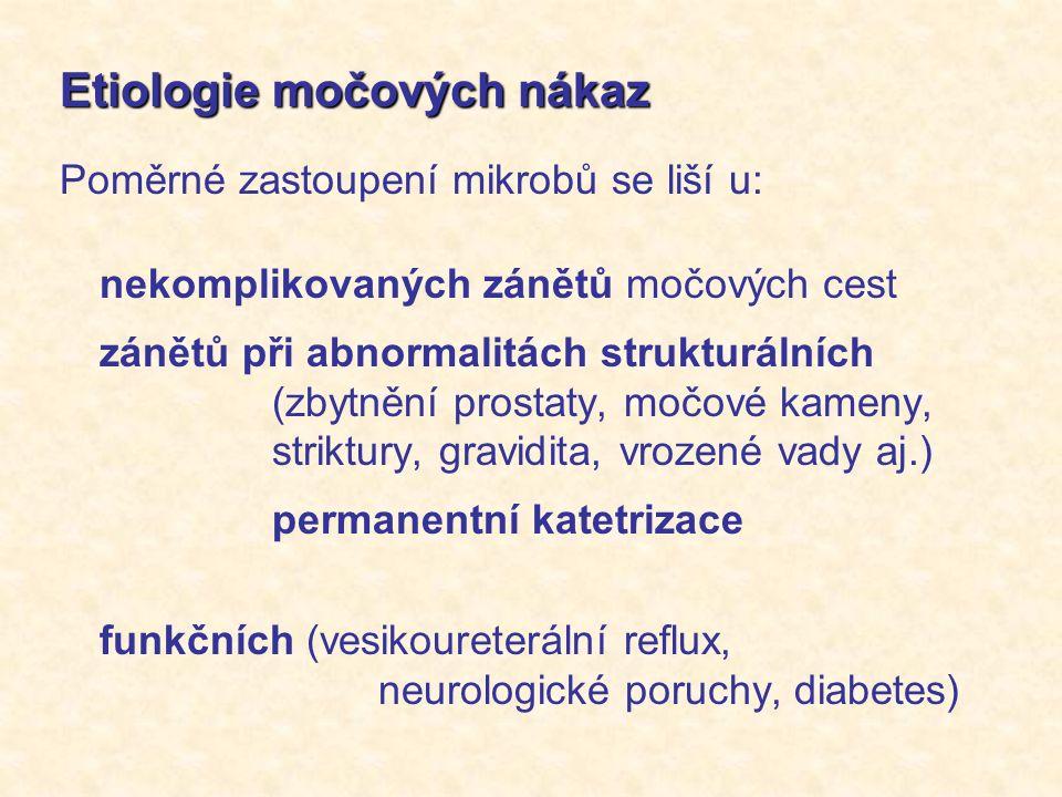 Etiologie močových nákaz Poměrné zastoupení mikrobů se liší u: nekomplikovaných zánětů močových cest zánětů při abnormalitách strukturálních (zbytnění prostaty, močové kameny, striktury, gravidita, vrozené vady aj.) permanentní katetrizace funkčních (vesikoureterální reflux, neurologické poruchy, diabetes)