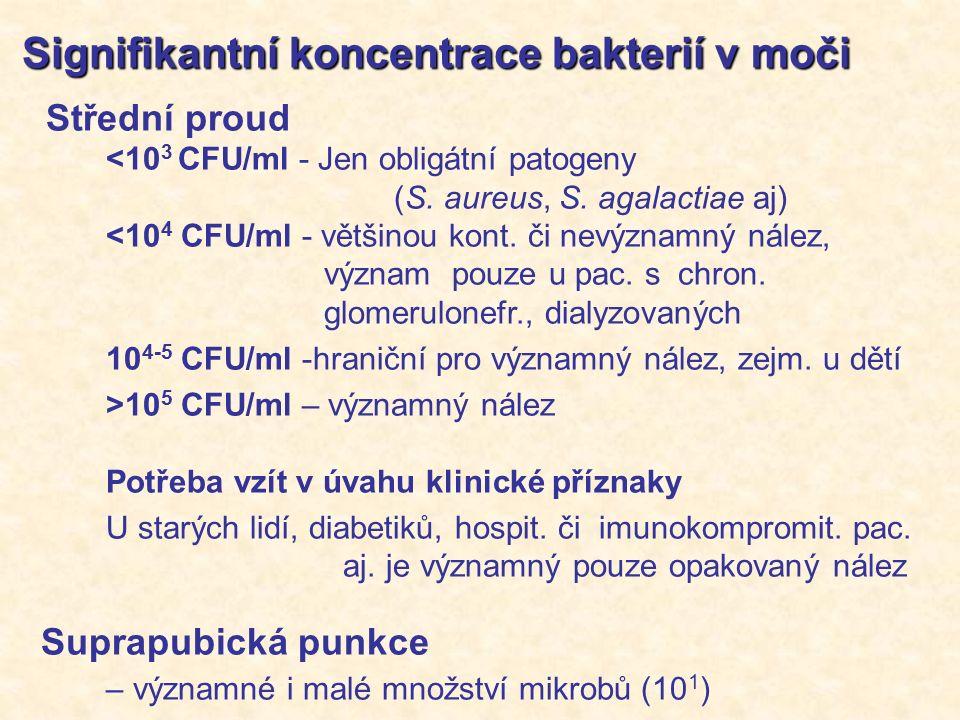 Signifikantní koncentrace bakterií v moči Signifikantní koncentrace bakterií v moči Střední proud <10 3 CFU/ml - Jen obligátní patogeny (S.