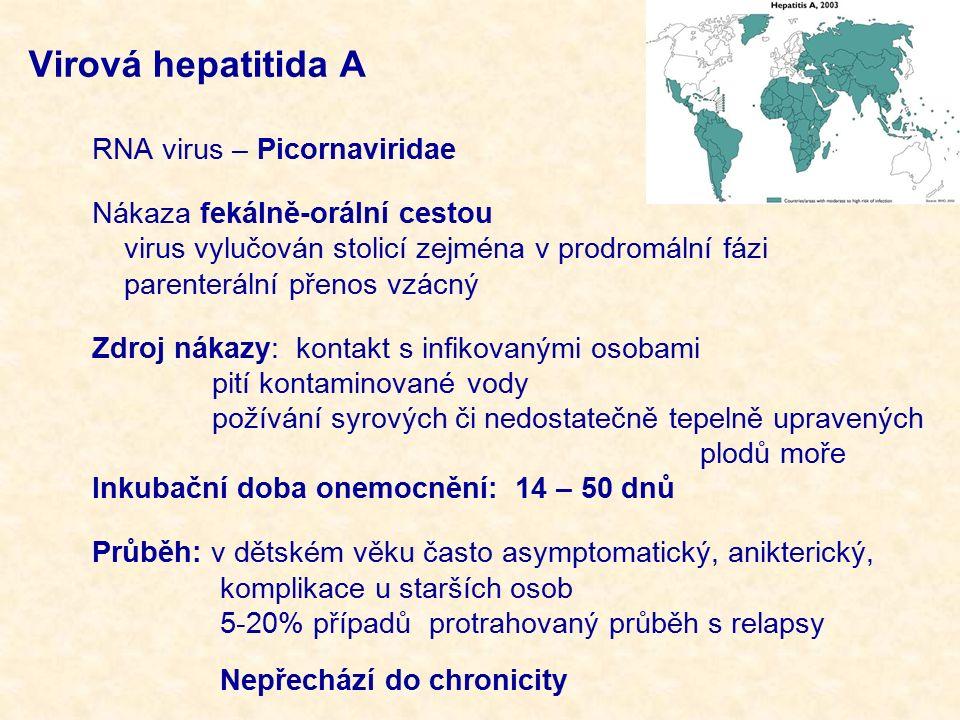 Virová hepatitida A RNA virus – Picornaviridae Nákaza fekálně-orální cestou virus vylučován stolicí zejména v prodromální fázi parenterální přenos vzácný Zdroj nákazy: kontakt s infikovanými osobami pití kontaminované vody požívání syrových či nedostatečně tepelně upravených plodů moře Inkubační doba onemocnění: 14 – 50 dnů Průběh: v dětském věku často asymptomatický, anikterický, komplikace u starších osob 5-20% případů protrahovaný průběh s relapsy Nepřechází do chronicity