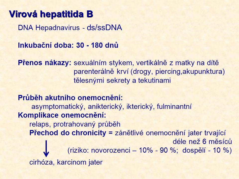 Virová hepatitida B DNA Hepadnavirus - ds/ssDNA Inkubační doba: 30 - 180 dnů Přenos nákazy: sexuálním stykem, vertikálně z matky na dítě parenterálně