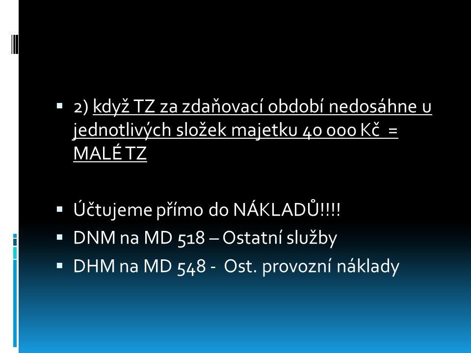  3) TZ u pronajatého majetku  Tvoří samostatnou položku,není ve vlastnictví  DNM na MD 019 – Jiný DNM  DHM na MD 029 – Jiný DHM