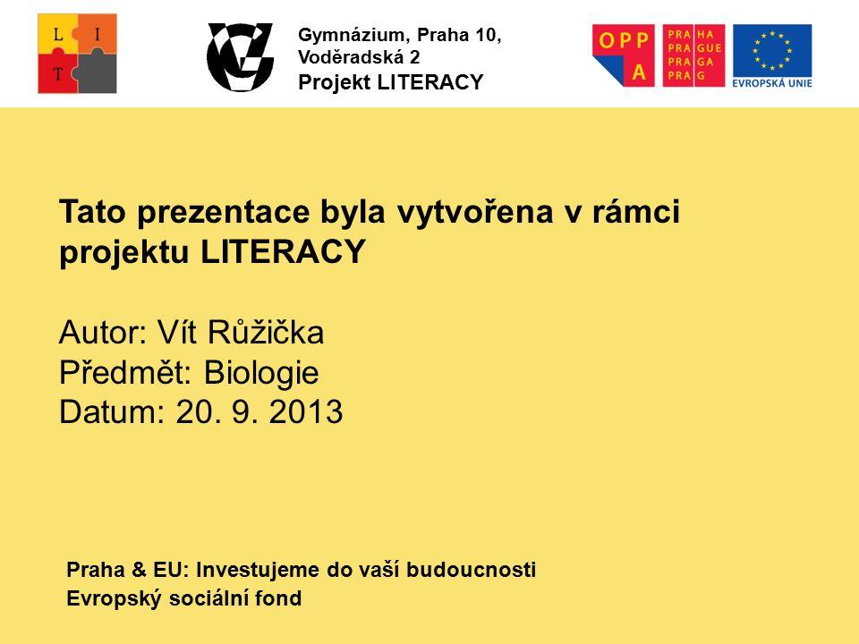 Praha & EU: Investujeme do vaší budoucnosti Evropský sociální fond Tato prezentace byla vytvořena v rámci projektu LITERACY Autor: Vít Růžička Předmět