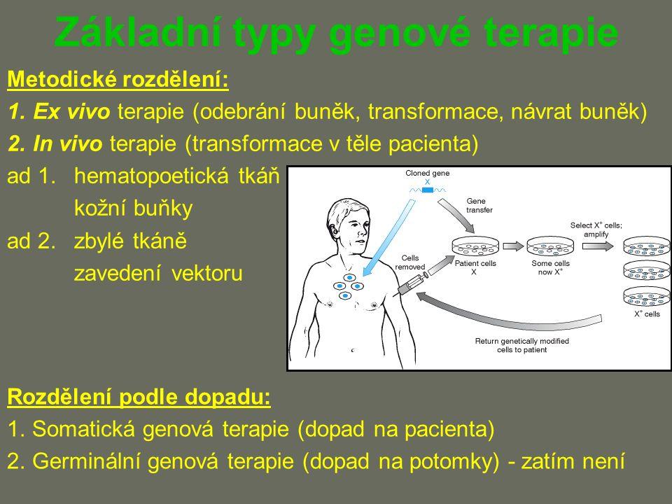 Základní typy genové terapie Metodické rozdělení: 1.Ex vivo terapie (odebrání buněk, transformace, návrat buněk) 2.In vivo terapie (transformace v těle pacienta) ad 1.hematopoetická tkáň kožní buňky ad 2.zbylé tkáně zavedení vektoru Rozdělení podle dopadu: 1.Somatická genová terapie (dopad na pacienta) 2.Germinální genová terapie (dopad na potomky) - zatím není