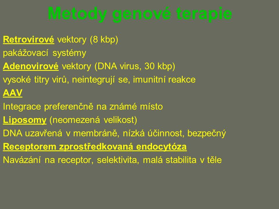 Metody genové terapie Retrovirové vektory (8 kbp) pakážovací systémy Adenovirové vektory (DNA virus, 30 kbp) vysoké titry virů, neintegrují se, imunitní reakce AAV Integrace preferenčně na známé místo Liposomy (neomezená velikost) DNA uzavřená v membráně, nízká účinnost, bezpečný Receptorem zprostředkovaná endocytóza Navázání na receptor, selektivita, malá stabilita v těle