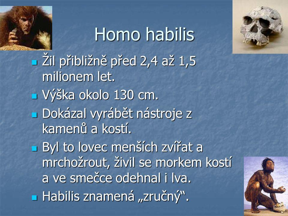 Homo habilis Žil přibližně před 2,4 až 1,5 milionem let.