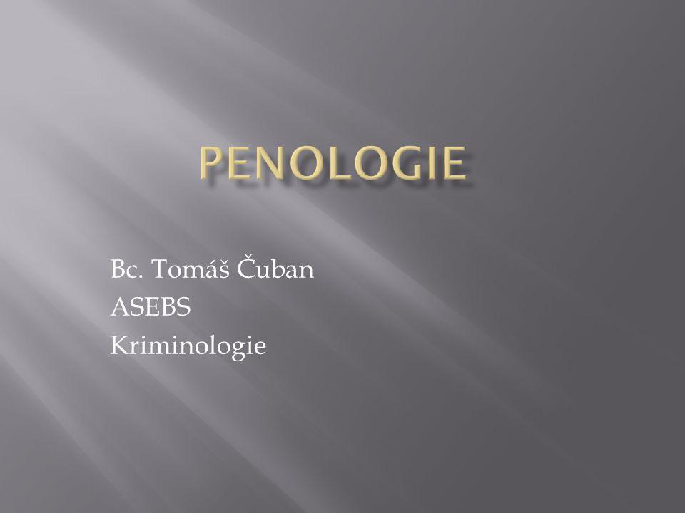 Bc. Tomáš Čuban ASEBS Kriminologie