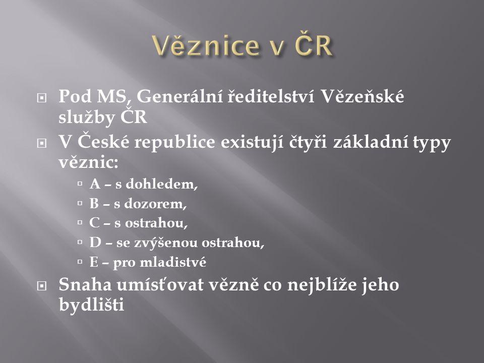  Pod MS, Generální ředitelství Vězeňské služby ČR  V České republice existují čtyři základní typy věznic:  A – s dohledem,  B – s dozorem,  C – s