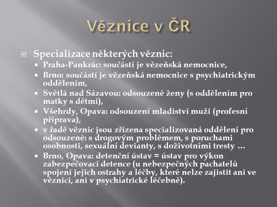  Specializace některých věznic:  Praha-Pankrác: součástí je vězeňská nemocnice,  Brno: součástí je vězeňská nemocnice s psychiatrickým oddělením,  Světlá nad Sázavou: odsouzené ženy (s oddělením pro matky s dětmi),  Všehrdy, Opava: odsouzení mladiství muži (profesní příprava),  v řadě věznic jsou zřízena specializovaná oddělení pro odsouzené: s drogovým problémem, s poruchami osobnosti, sexuální devianty, s doživotními tresty …  Brno, Opava: detenční ústav = ústav pro výkon zabezpečovací detence (u nebezpečných pachatelů spojení jejich ostrahy a léčby, které nelze zajistit ani ve věznici, ani v psychiatrické léčebně).