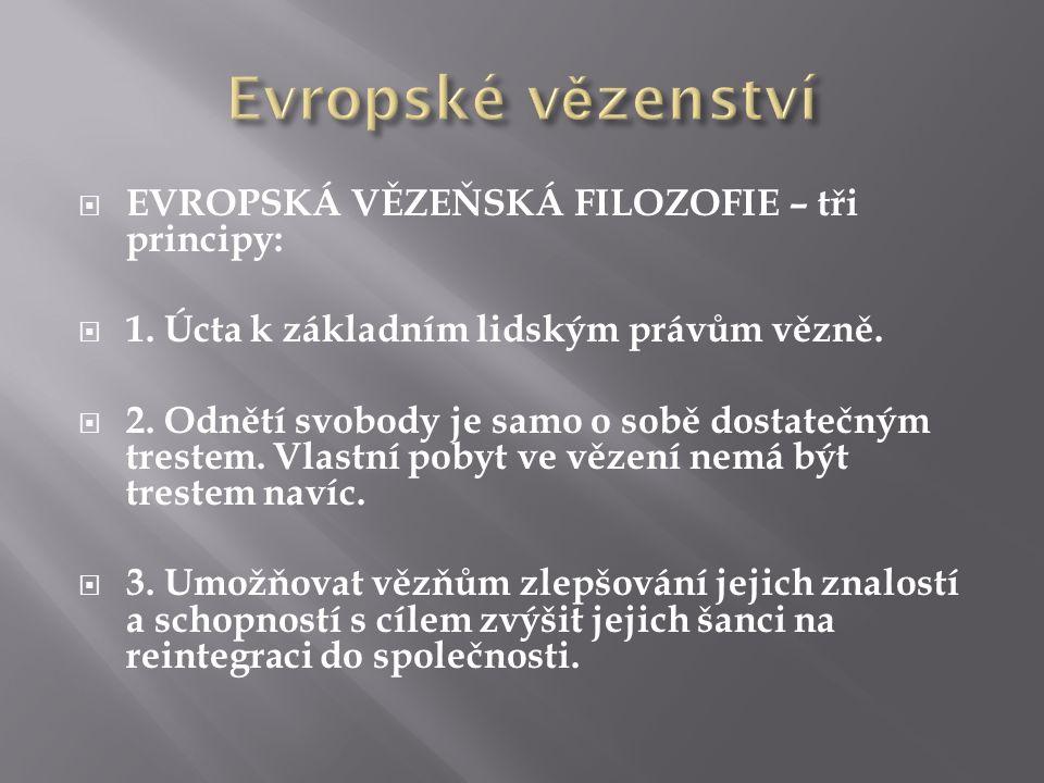  EVROPSKÁ VĚZEŇSKÁ FILOZOFIE – tři principy:  1. Úcta k základním lidským právům vězně.  2. Odnětí svobody je samo o sobě dostatečným trestem. Vlas