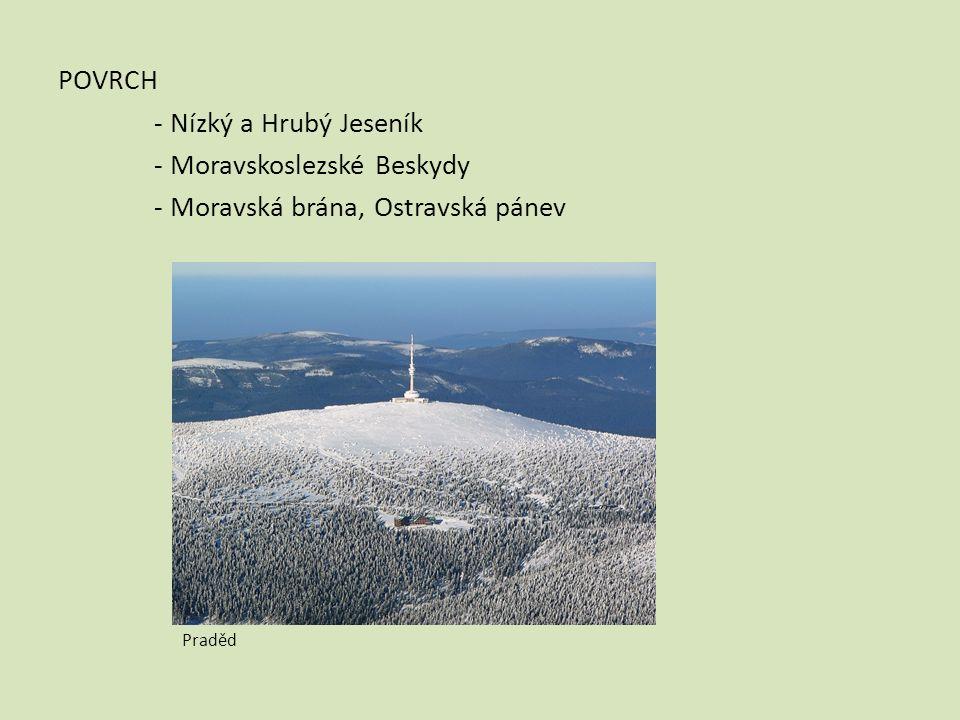POVRCH - Nízký a Hrubý Jeseník - Moravskoslezské Beskydy - Moravská brána, Ostravská pánev Praděd