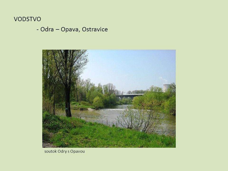 VODSTVO - Odra – Opava, Ostravice soutok Odry s Opavou