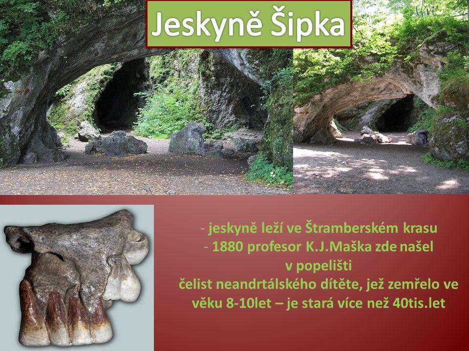 - jeskyně leží ve Štramberském krasu - 1880 profesor K.J.Maška zde našel v popelišti čelist neandrtálského dítěte, jež zemřelo ve věku 8-10let – je st