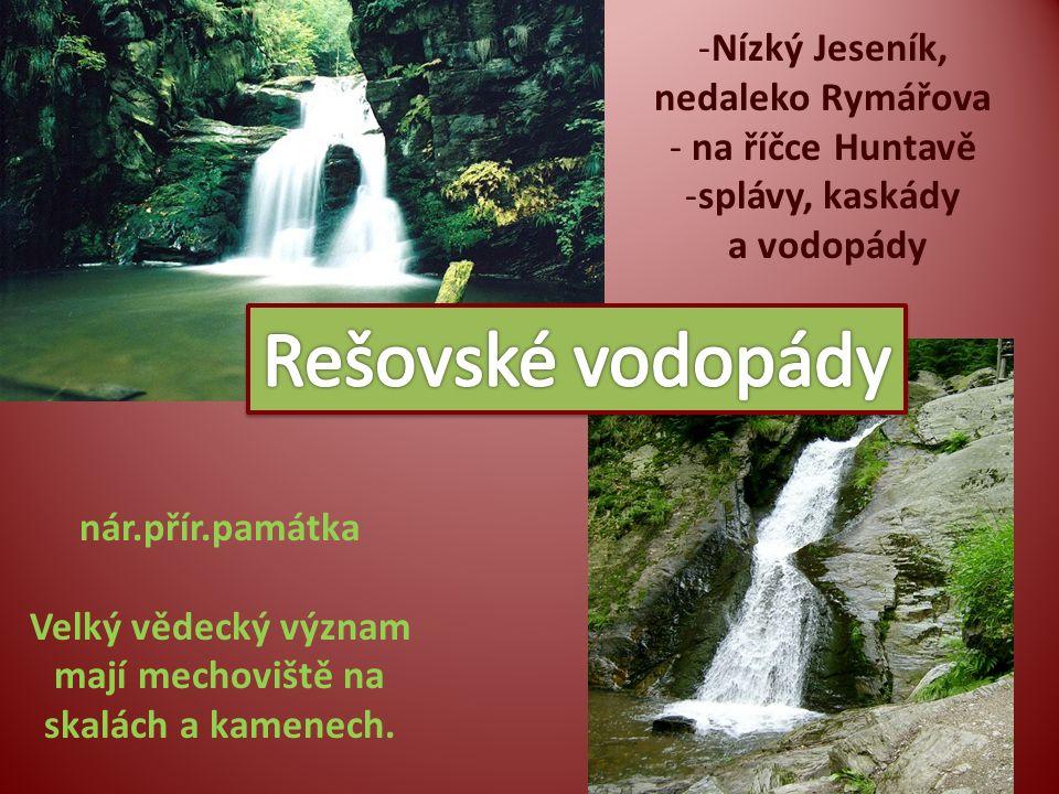 -Nízký Jeseník, nedaleko Rymářova - na říčce Huntavě -splávy, kaskády a vodopády nár.přír.památka Velký vědecký význam mají mechoviště na skalách a ka