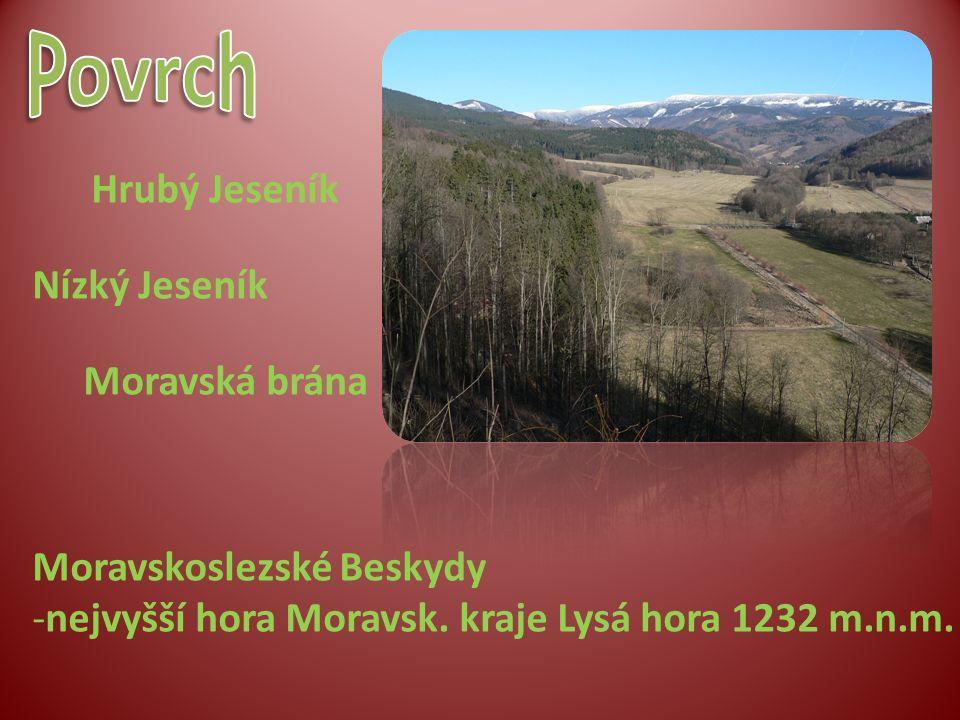 Hrubý Jeseník Nízký Jeseník Moravská brána Moravskoslezské Beskydy -nejvyšší hora Moravsk. kraje Lysá hora 1232 m.n.m.