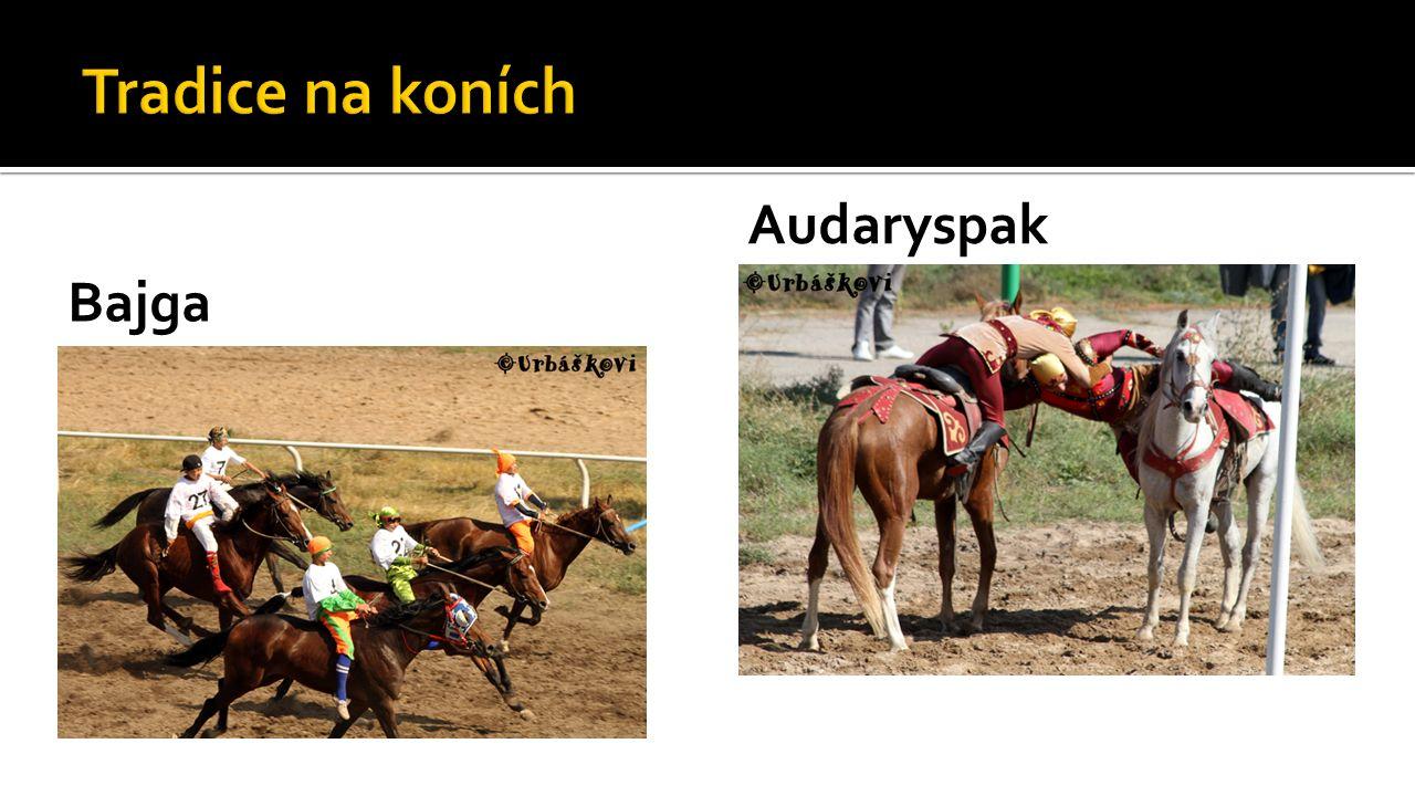 Bajga Audaryspak