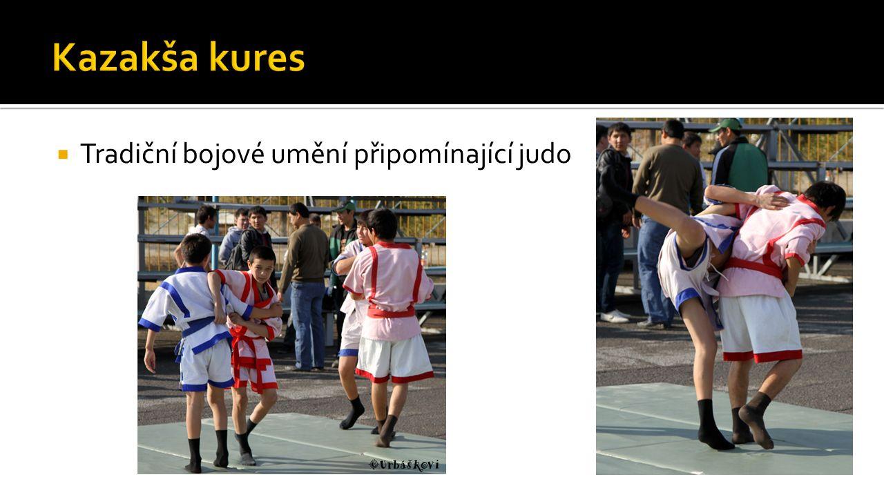  Tradiční bojové umění připomínající judo