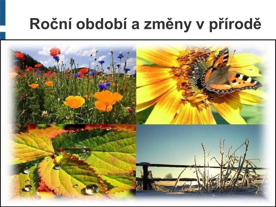 Roční období a změny v přírodě