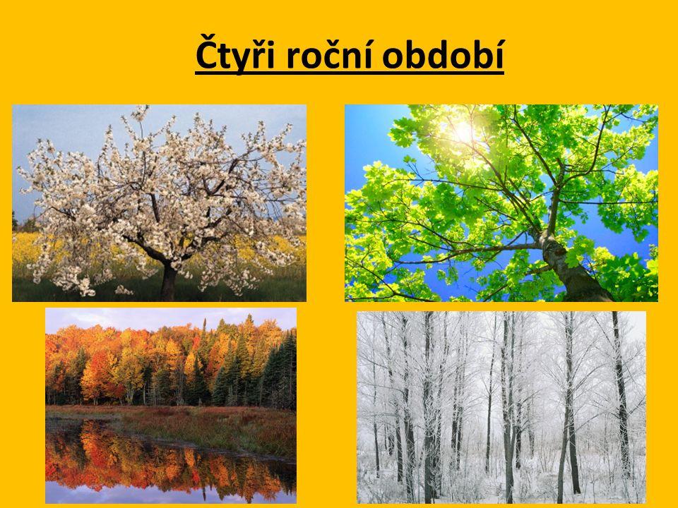 Motivace Mezipředmětové vztahy: Přírodověda – čtyři roční období, otáčení Země kolem Slunce – střídání čtyř ročních dob.