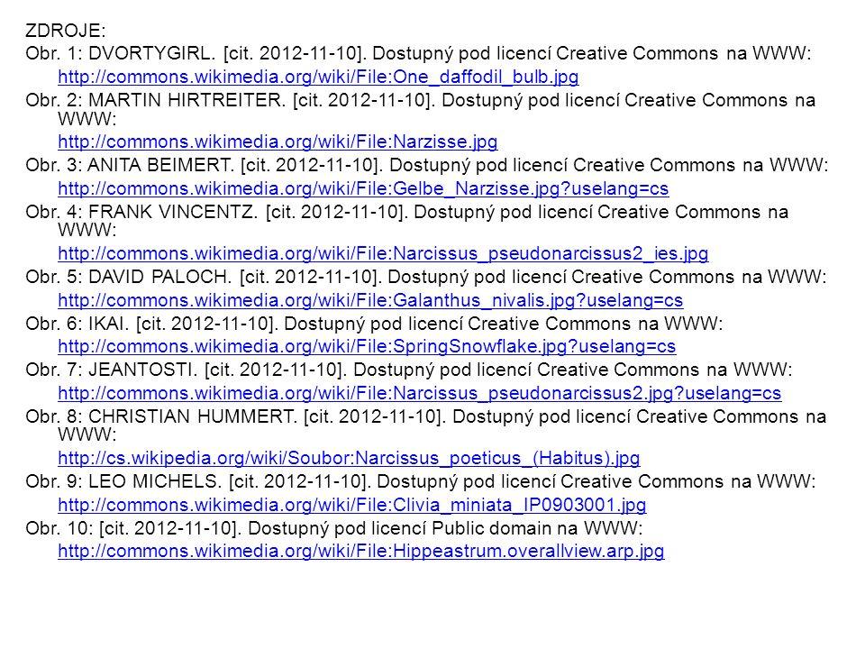 ZDROJE: Obr. 1: DVORTYGIRL. [cit. 2012-11-10].