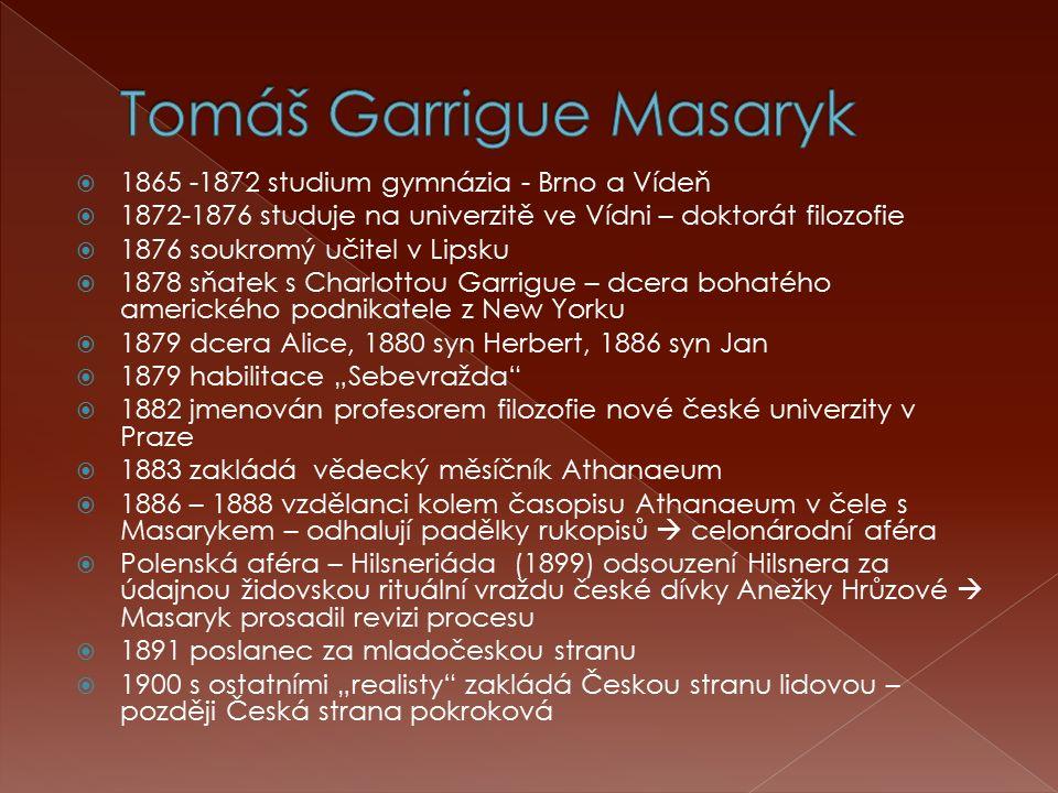  1865 -1872 studium gymnázia - Brno a Vídeň  1872-1876 studuje na univerzitě ve Vídni – doktorát filozofie  1876 soukromý učitel v Lipsku  1878 sň