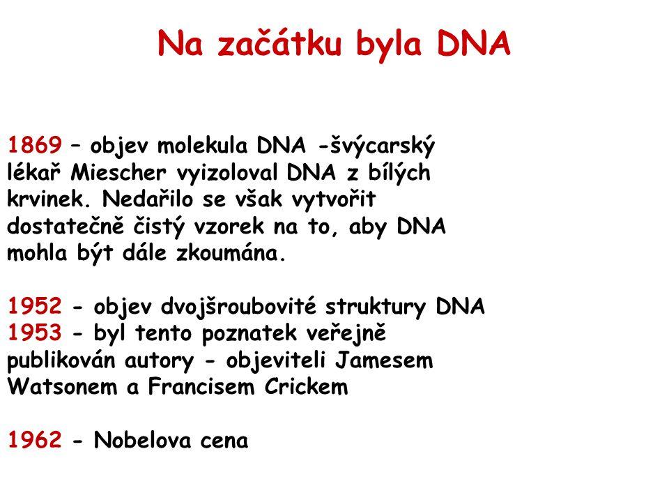 1869 – objev molekula DNA -švýcarský lékař Miescher vyizoloval DNA z bílých krvinek.