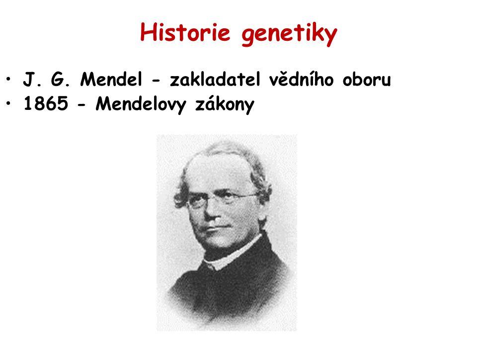 Historie genetiky J. G. Mendel - zakladatel vědního oboru 1865 - Mendelovy zákony