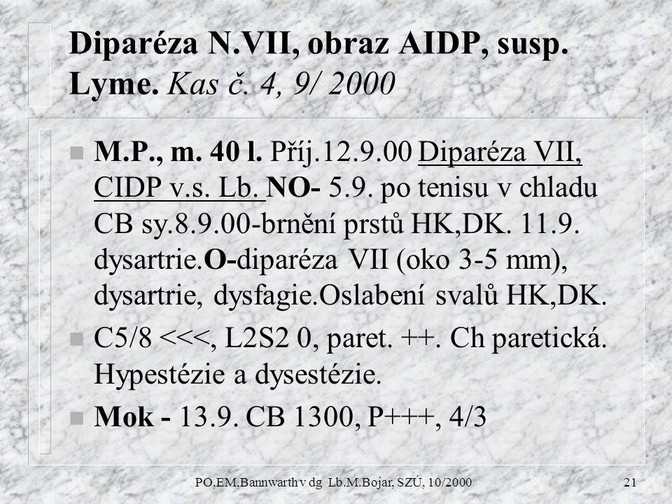 PO,EM,Bannwarth v dg Lb.M.Bojar, SZÚ, 10/200021 Diparéza N.VII, obraz AIDP, susp.