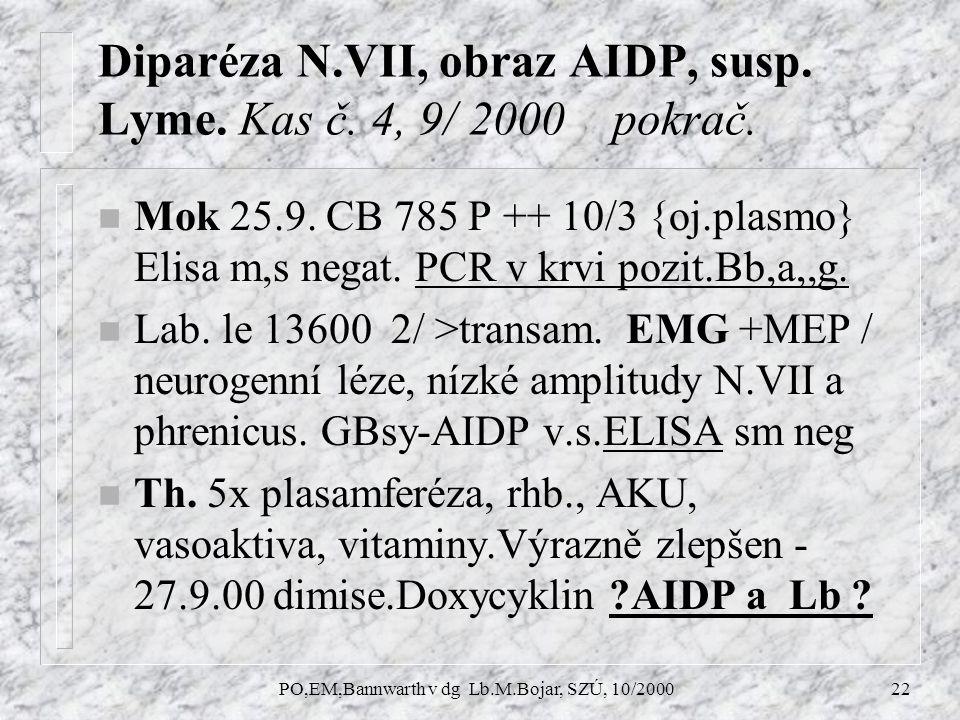 PO,EM,Bannwarth v dg Lb.M.Bojar, SZÚ, 10/200022 Diparéza N.VII, obraz AIDP, susp.