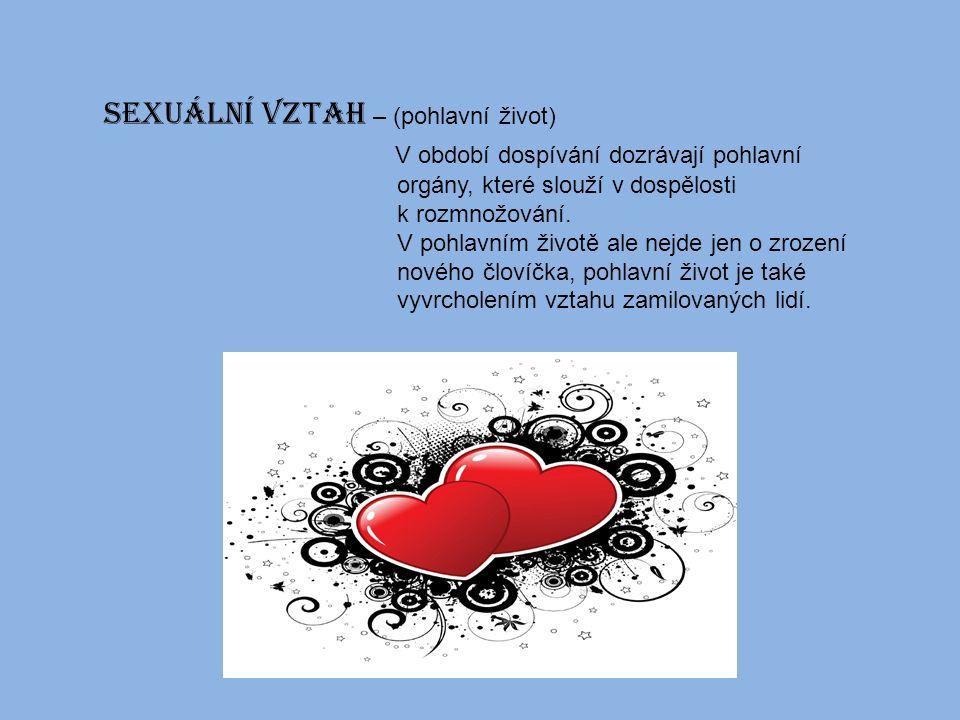 Sexuální vztah – (pohlavní život) V období dospívání dozrávají pohlavní orgány, které slouží v dospělosti k rozmnožování.