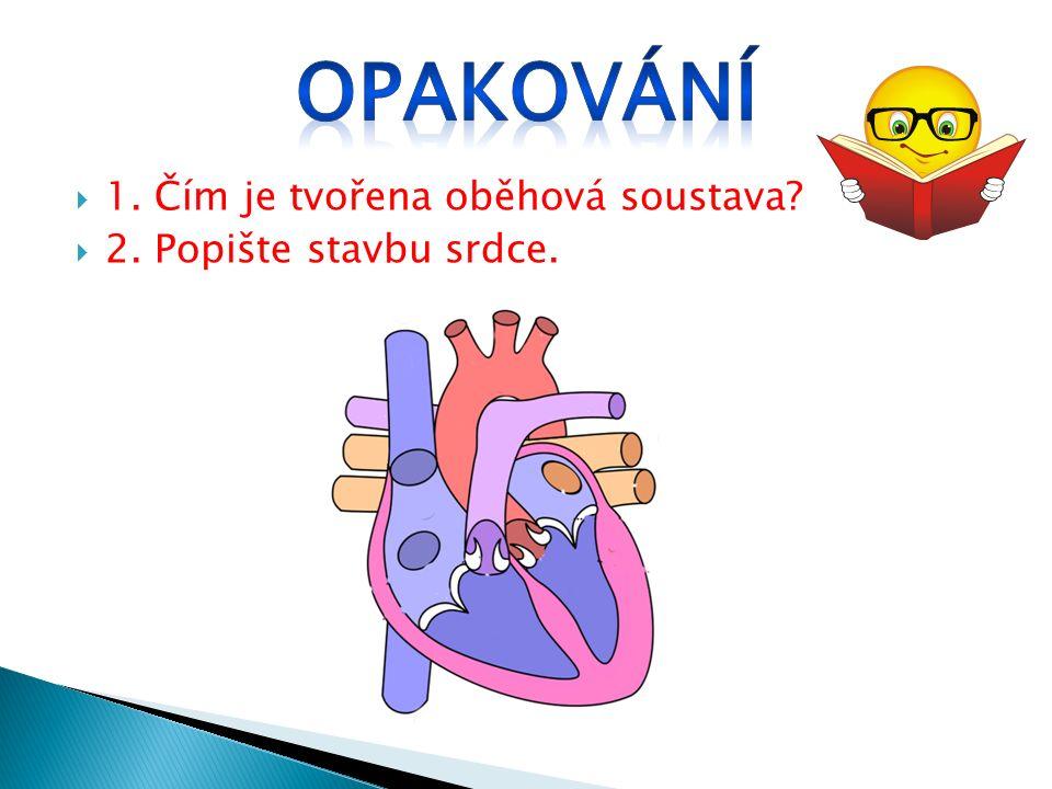  1. Čím je tvořena oběhová soustava  2. Popište stavbu srdce.