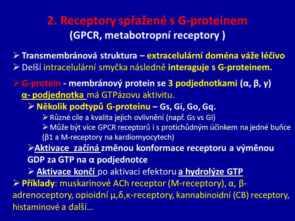  Transmembránová struktura – extracelulární doména váže léčivo  Delší intracelulární smyčka následně interaguje s G-proteinem.  G-protein - membrán