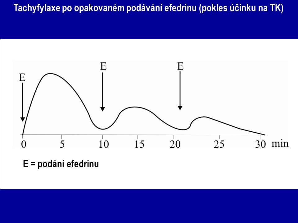 Tachyfylaxe po opakovaném podávání efedrinu (pokles účinku na TK) E = podání efedrinu