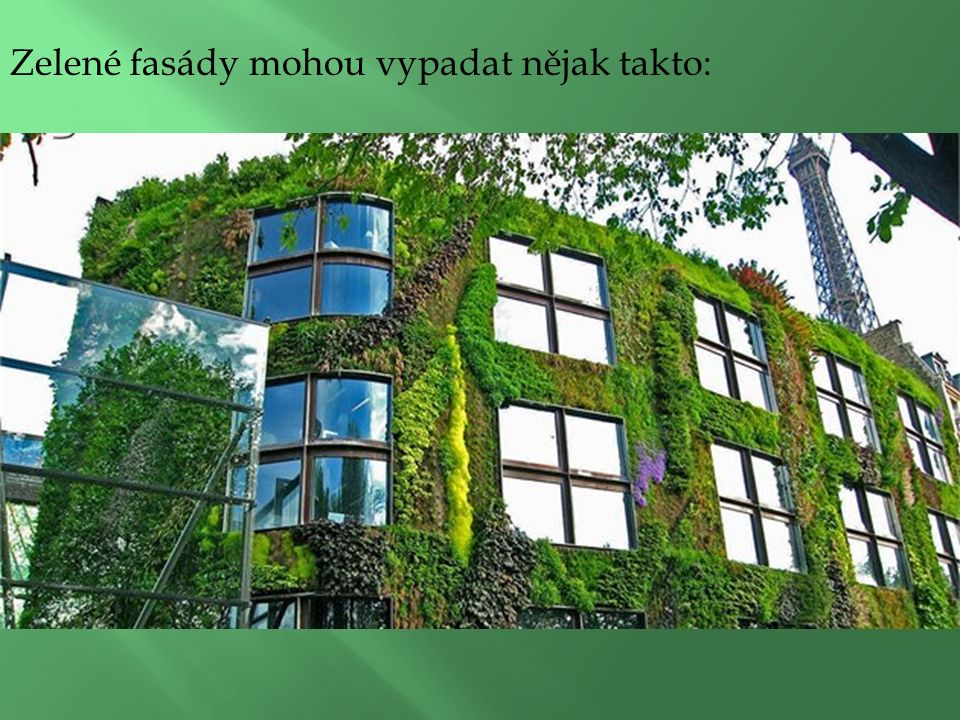 Zelené fasády mohou vypadat nějak takto: