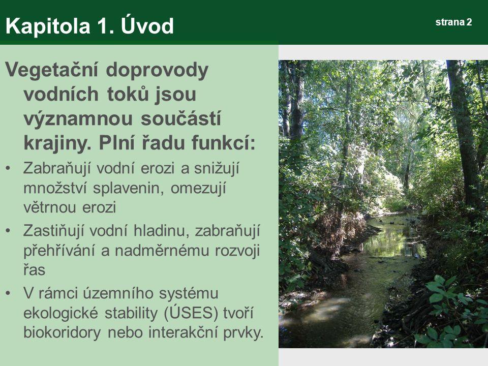 strana 43 Kapitola 3.Výsledky Metodika hodnocení VD 3) Tvorba geodatabáze VD 3.1 Datová část – C.